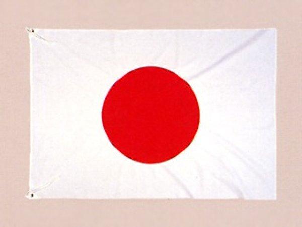 画像1: 国旗 アクリル 2m70cm×4m5cm (1)